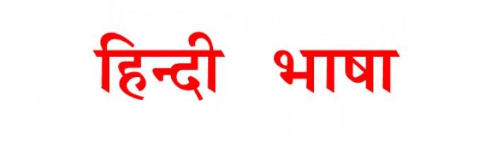 Indian bloggers Should Target Hindi Language