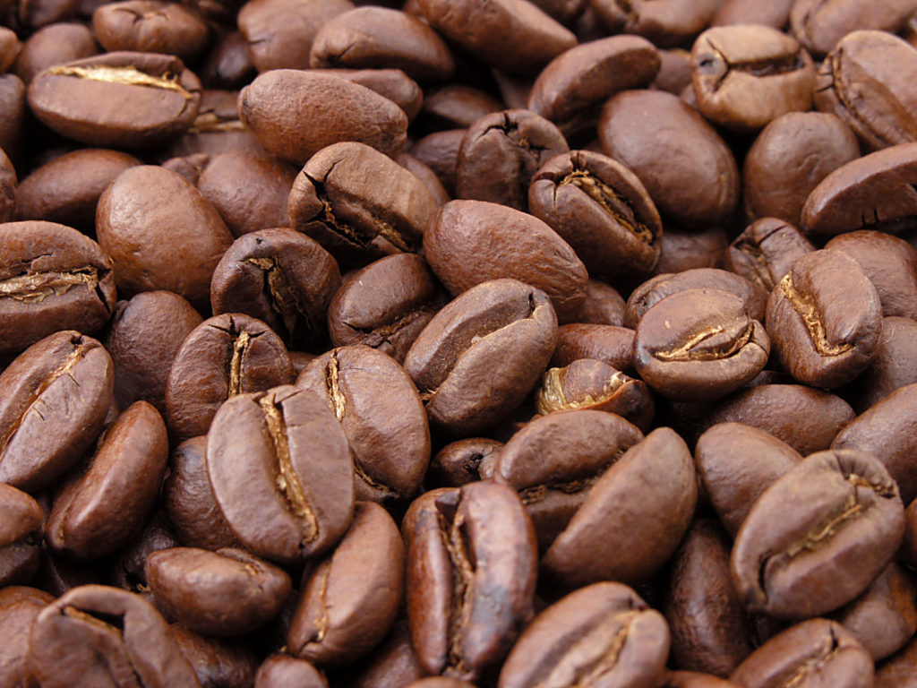 coffee-bean-seo